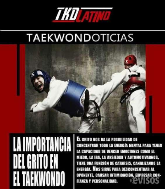 Taekwondo para niños mayaguez