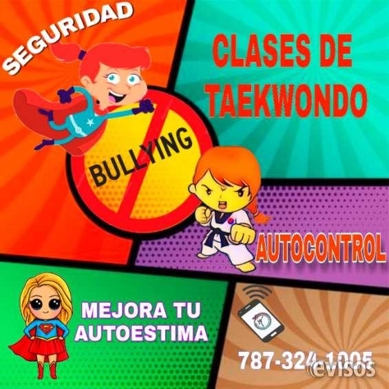 Clases de taekwondo mayaguez