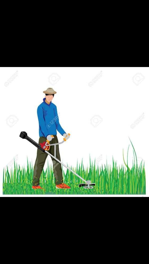 José : recorte de grama